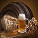 Продаём ячмень пивоваренный оптом