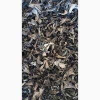 Сушеные грибы черная лисичка
