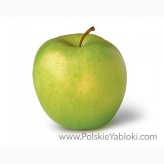 Продажа яблок (Сербия, Молдова)