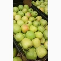 Яблоки в наличии