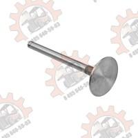 Впускной клапан Балканкар Д3900 (31431641)