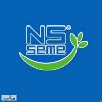 Семена подсолнечника Нови Сад (НС) Сербия