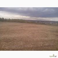 Расчистка полей от кустарника и мелколесья. Мульчер