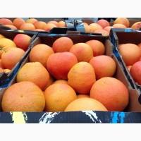 Продам оптом грейпфрут Дункан с доставкой по всей территории России