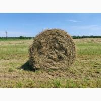 Сено луговое Клинский район урожай 2020 года