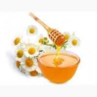 Ищу поставщиков мёда