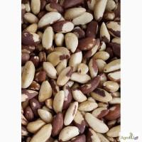 Продаем бразильский орех