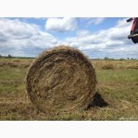 Продаем сено в рулонах. Урожай 2017
