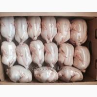 КОРНИШОНЫ (тушка цыпленка) 3-х калибров охл/зам