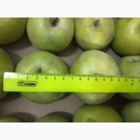 Яблоки из Краснодарского края оптом
