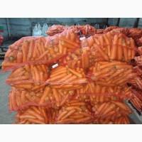 Морковь мытая оптом