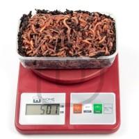 Червь Дендробена 0.5 кг