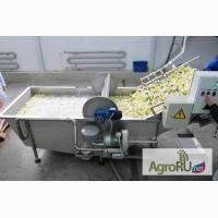 Вентиляторная моечная машина (мойка овощей, фруктов и ягод)
