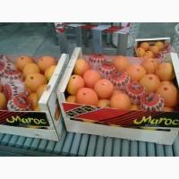 Свежие апельсины, Марокко