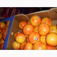 Продам грейпфрут сорта Дункан