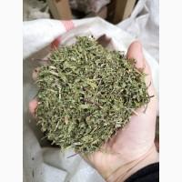 Мята трава/лист