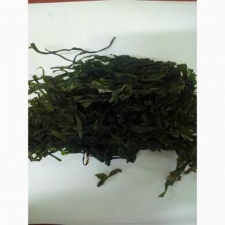 Ламинария (морская капуста) (оптом от 5кг)