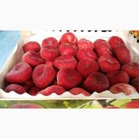 Персик Инжир по выгодной цене