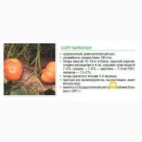 Семена тыквы крупноплодной, сорта белоруской селекции