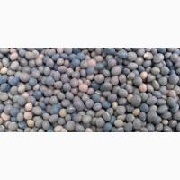 Семена яровой вики Льговской 22 ЭС, РС1, РСт