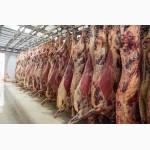 Сельхоз-продукция и лекарственное сырье
