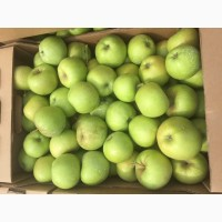Яблоки Муцу продам оптом