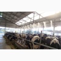 Охлаждение животных. Системы туманообразования