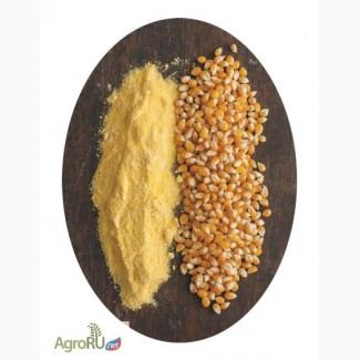Мука кукурузная ГОСТ тонкий и крупный помол