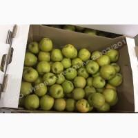 Яблоки оптом 2-ой сорт