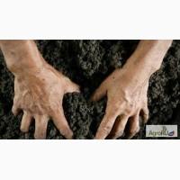 БЕСПЛАТНЫЙ химический анализ почвы
