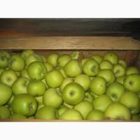 Покупайте яблоки Семеренко. Отменное качество за выгодную цену