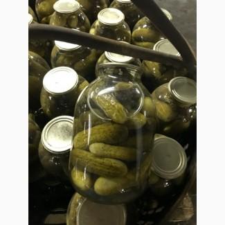 Продажа огурцов с зеленью в заливке в банках оптом от производителя