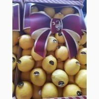 Лимон из Испании