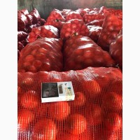 Лук репчатый от производителя, от 20 тонн, доставка по РФ