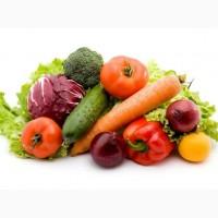 Продаем овощи оптом
