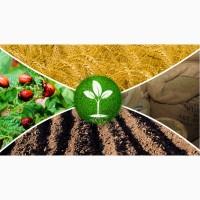 Предлагаем агрохимию.Средства защиты растений