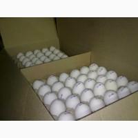 Не товарное яйцо по ценам птицефабрик