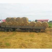 Сено разнотравное в рулоне, 350 кг Тюм.обл