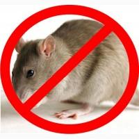 Продаем средство для борьбы с грызунами (мыши, крысы) оптом и в розницу