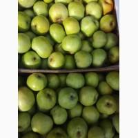 Яблоки Бородинка. Опт