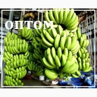 Бананы зелёные ОПТом от производителя (Эквадор) от 20 тонн