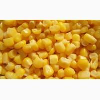 ООО НПП «Зарайские семена» продает семена гибридов кукурузы оптом