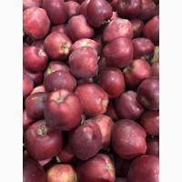 Яблоки красное РЧ от поизводителя