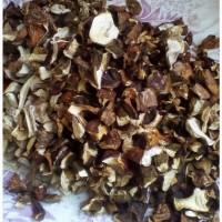 Продаем грибы белые сушеные оптом урожай 2020г
