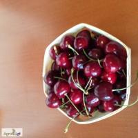 Упаковка для ягод и фруктов натуральная