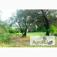 Продам землю сельхозназначения 80 соток