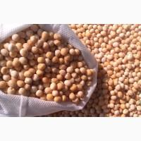 Фуражное зерно: горох