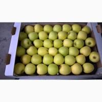 Яблоки Голден первый сорт