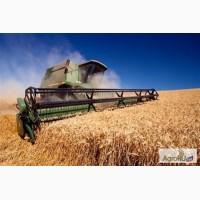 Зерно, жмыхи, шроты - доставка по всей России