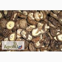 Шиитаке грибы сушеные